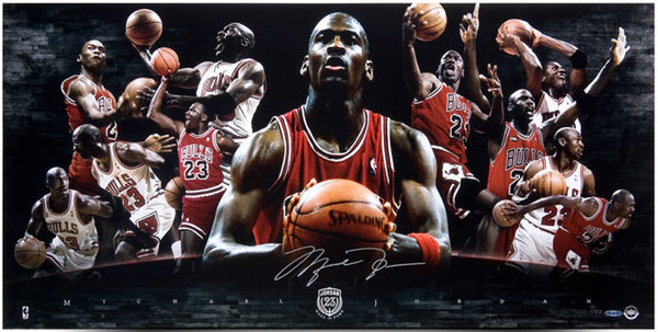 Michael Jordan Autographed 2009 Hall of Fame collage