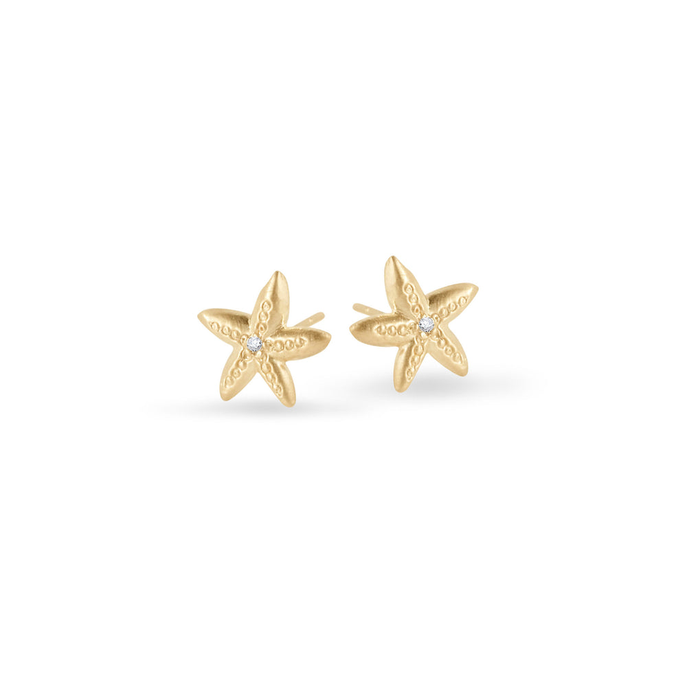 WD94, 14kt gold, starfish stud with diamond in center stud earrings