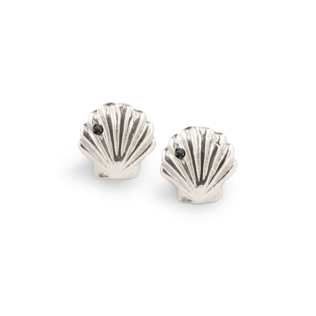 Clam Shell Stud