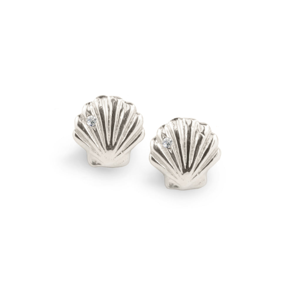 WD148 - Clam Shell Studs