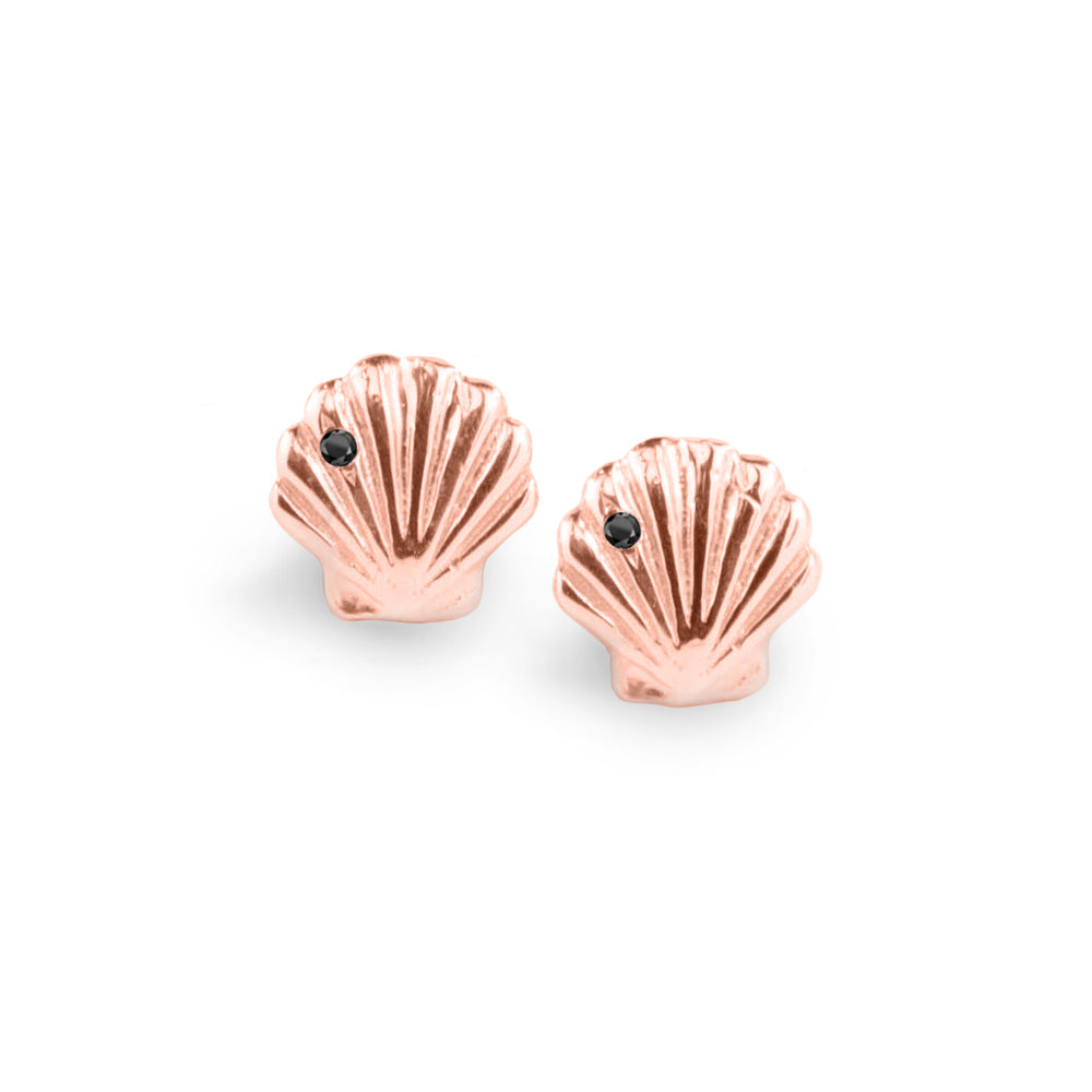 wd148, 14kt gold clam shell with diamond stud earrings