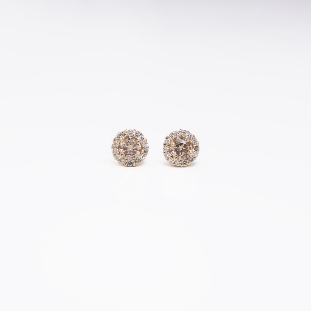 WD461 - Champagne Diamond with Halo Studs
