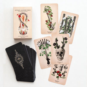 Antique Anatomy Tarot Cards
