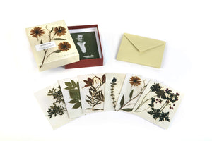 Herbaria Notecards
