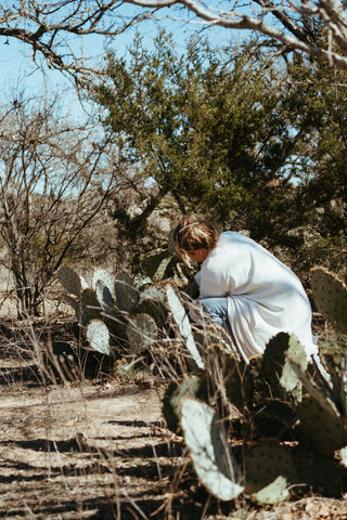 Miranda crouches near a prickly pear cactus collecting cochineal