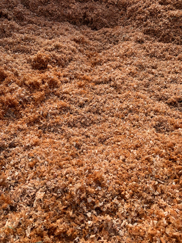 A close up photo of pecan wood shavings at Berdoll Sawmill