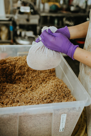 Pecan wood shavings being gathered into pouches so we can steep them in water to create our natural dye baths
