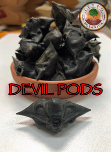 Devil Pods-Bat Nuts