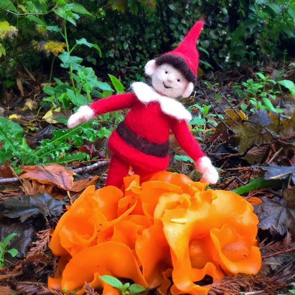 Woolpets Elf and mushrooms