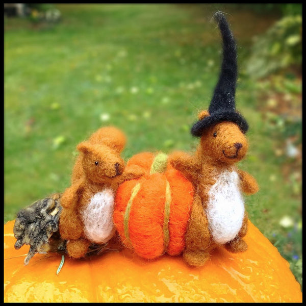 Woolpets Squirrels and pumpkin