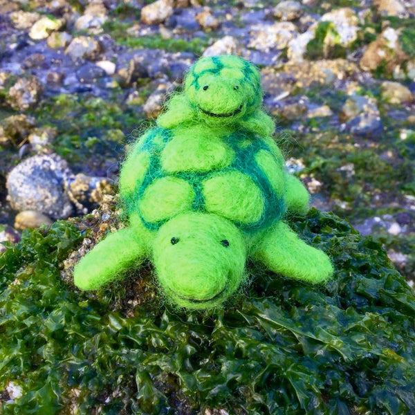 Sea Turtle Needle Felting Kit