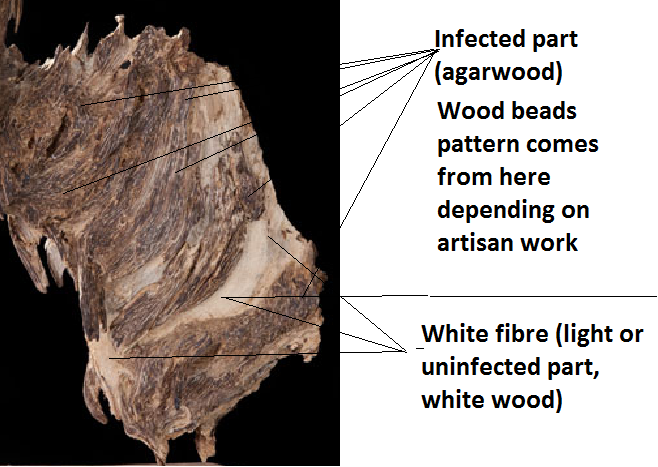 Agarwood infected wood white food