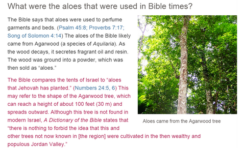 agarwood bible