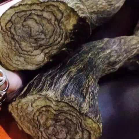 aged, natural agarwood indonesia
