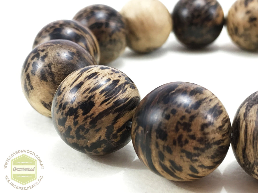Beads SOLD *New* The Snow Leopard: Wild Agarwood Bracelet 29g 16mm
