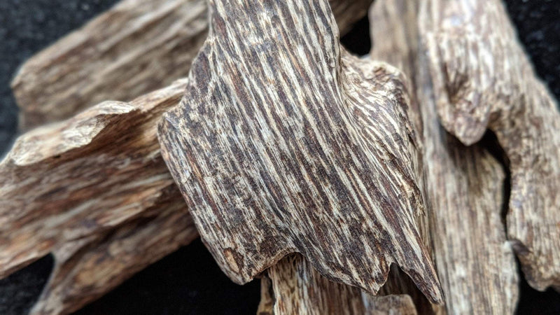 Oil *LIMITED STOCK * Wild Vietnamese Agarwood Oud Oil Binh Phuoc Forest The Honey Dried Herbs