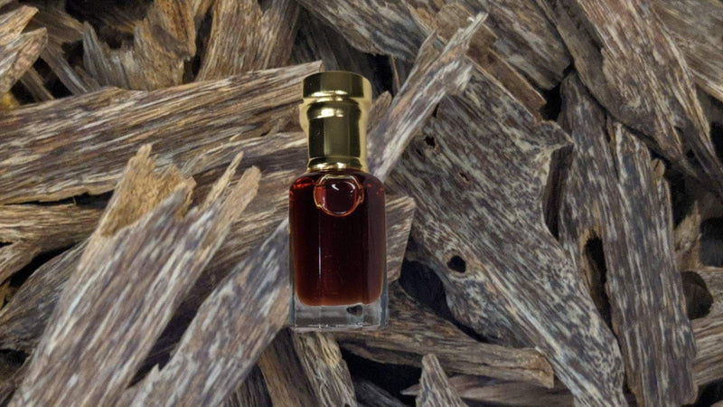 Oil *New* The Sacred Forest Island 100% Pure Wild  Oud Oil , distilled from Aquilaria Sinensis