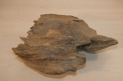 The rarest fragrance wood on earth: Ky nam, Kyara, 奇楠