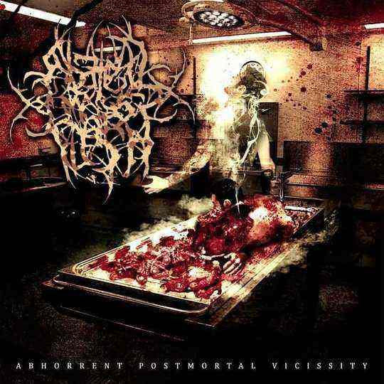 ABATED MASS OF FLESH- Abhorrent Postmortal Vicissity CD