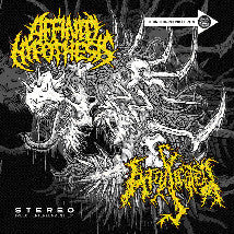 AFFINITY HYPOTHESIS / INTOXICATED- Split CD on Imbecil Ent.