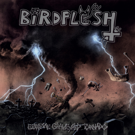 Birdflesh- Extreme Graveyard Tornado CD on Everlasting Spew Rec.