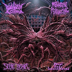 Bradi Cerebri Ectomia / Methadone Abortion Clinic / Septicopyemia / Fecal Body Incorporated- Split CD on Lord Of The Sick Rec.