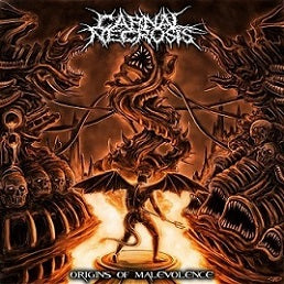 Carnal Necrosis- Origins Of Malevolence CD on Immortal Souls Prod.