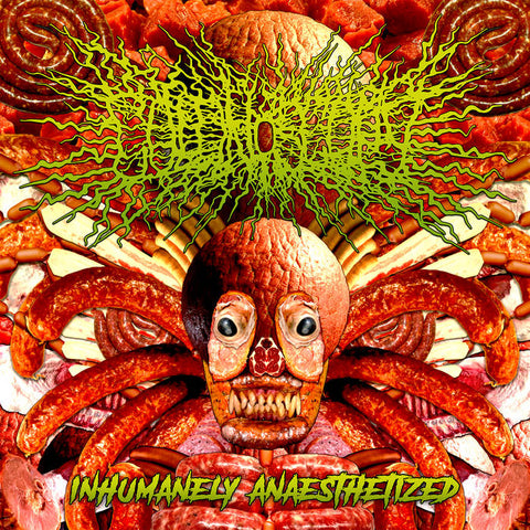 COLONOSCOPY- Inhumanely Anaesthetized CD on Sevared Rec.