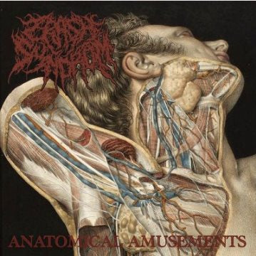 Crash Syndrom- Anatomical Amusements CD on Obliteration Rec.