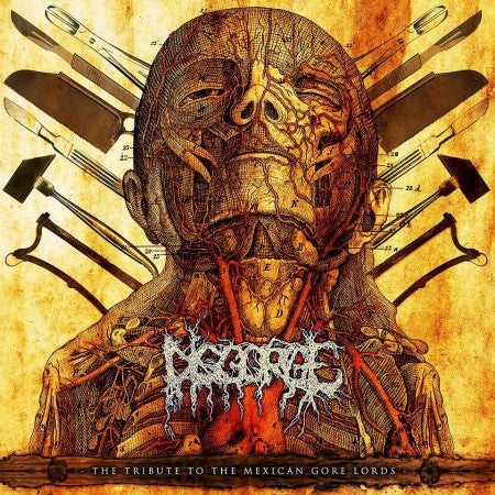 Disgorge (Mex)- Tribute To The Mexican Gore Lords CD on Gore Cannibal Rec.