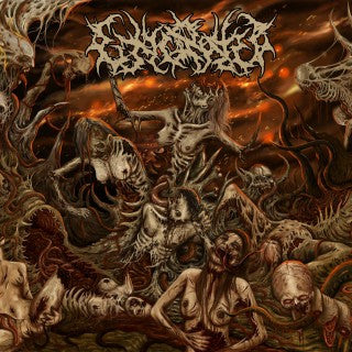 Execrated- Condemnation To Eternal Punishment MCD on Anopsys Rec