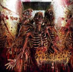 Fleshrot- Traumatic Reconfiguration CD on Deepsend Rec.