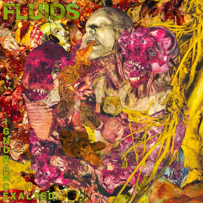 Fluids- Ignorance Exalted CD on Maggot Stomp