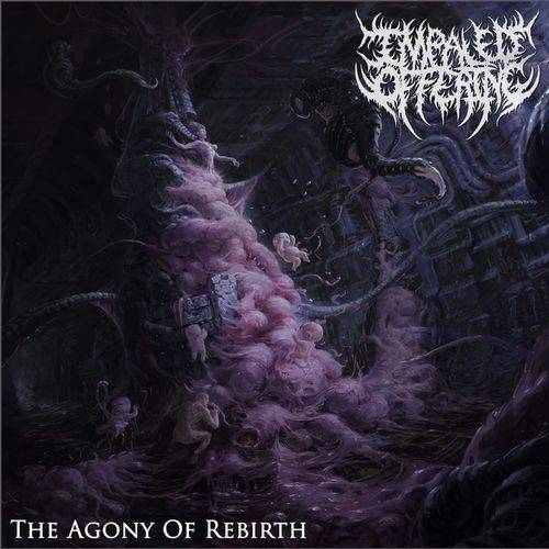 IMPALED OFFERING- The Agony Of Rebirth CD on Sevared Records