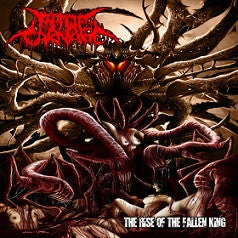 Pit Of Carnage- The Rise Of The Fallen King CD on CDN Rec.