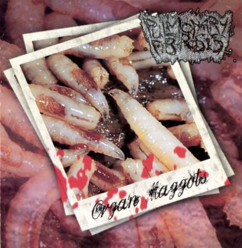 Pulmonary Fibrosis- Organ Maggots CD on Eclectic Prod.