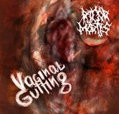 Rigor Mortis- Vaginal Gutting CD on Not Like Most Records
