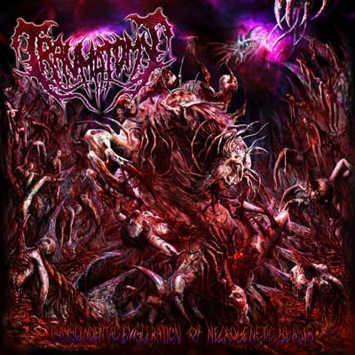 "TRAUMATOMY- Transcendental Evisceration Of.. 12"" LP VINYL on Morbid Generation"