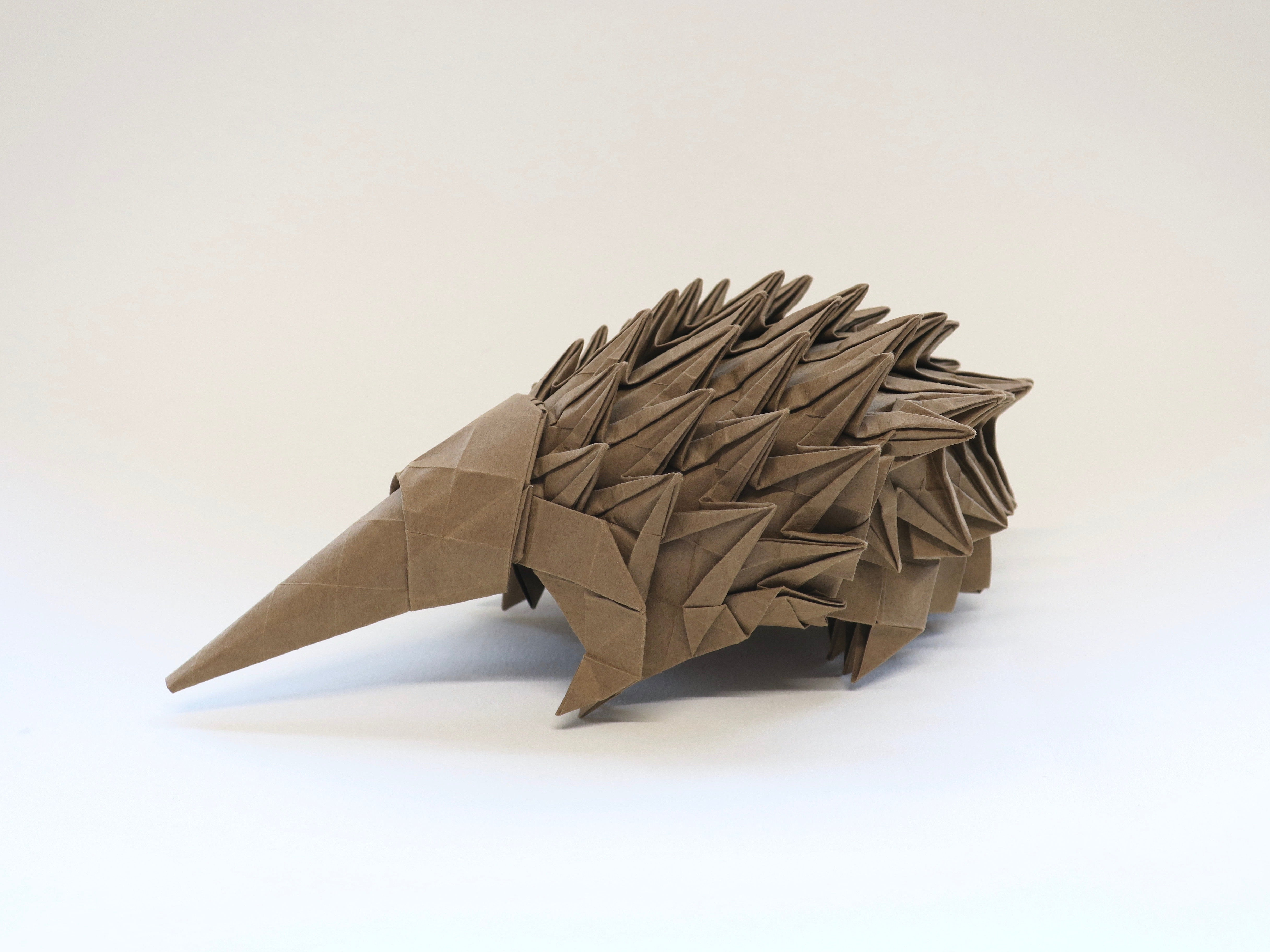 origami echidna, animal sculpture display