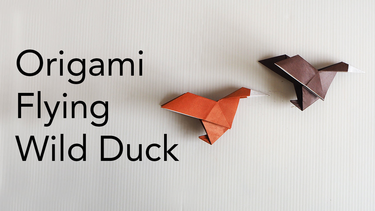 Tutorial for origami flying duck
