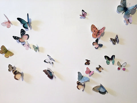 Butterfly Print Wall Decoration