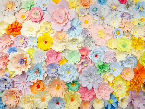 Paper Flower Back Drop