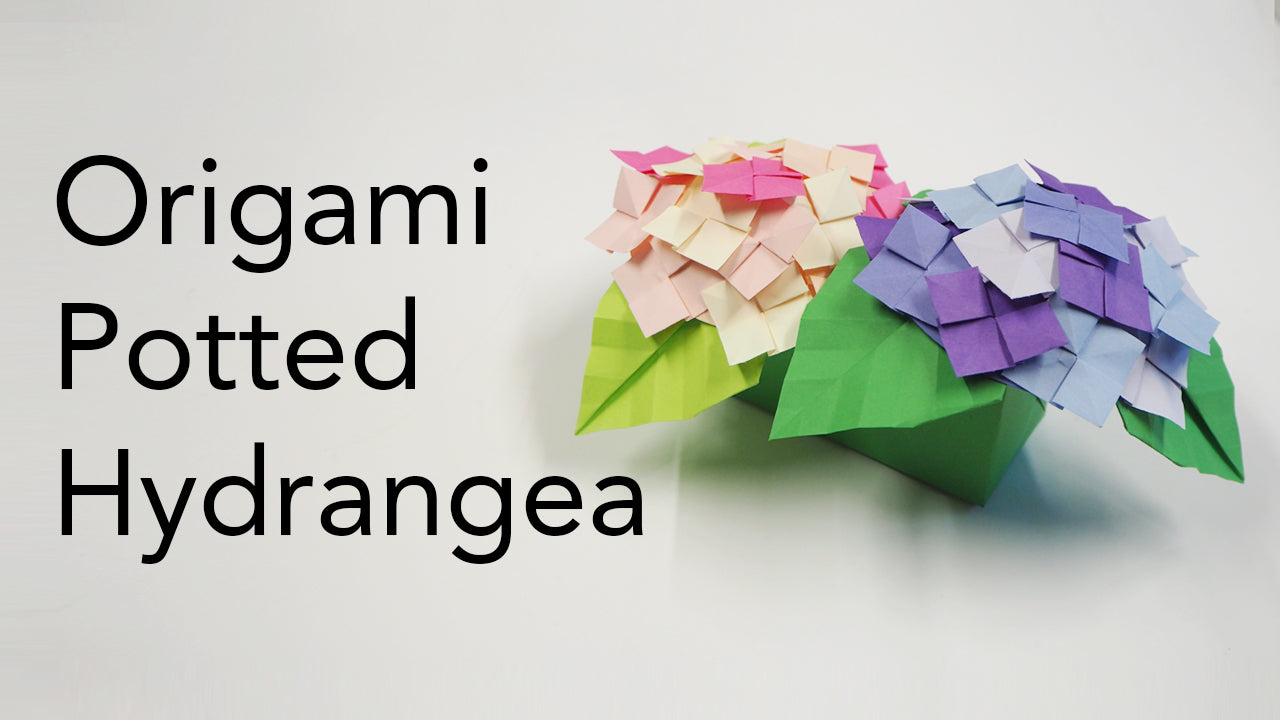 Origami Hydrangea Flower and Plant Pot Tutorial