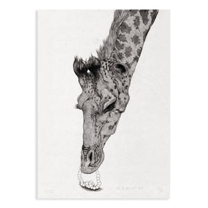 Animal Series Floating Zoo Art Print No.17 - Giraffe: Oh! My Pearls Fell Out! - Print - Lavender Home London