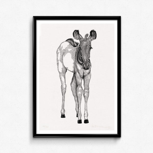 Animal Series Floating Zoo Art Print No.09 - Quiet Looking Of Zebra - Print - Lavender Home London