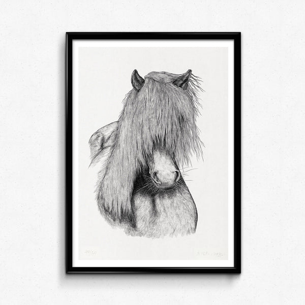 Animal Horse Detailed Drawing Print