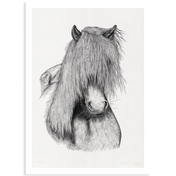 Animal Series Floating Zoo Print No.07 - The horse named Jay - Print - Lavender Home London