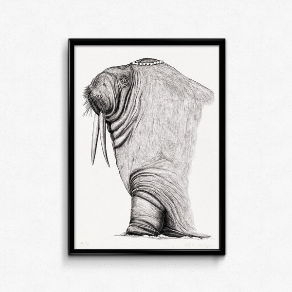 Animal Walrus Detailed Drawing Print