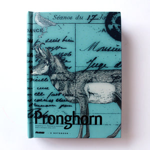 Classic Hardcover Notebook - Pronghorn - Brown Paper
