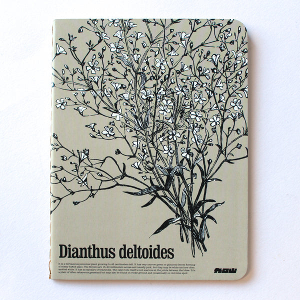 Soft Binding Brown Paper Pocket Notebook - Dianthus Deltoides